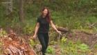 Debris remains on Ketron Island one year after stolen Sea-Tac plane crash