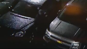 Video shows Seattle police drive away during car dealership burglary involving Sriracha