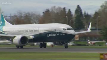 Aviation consultant: U.S. government took too long to ground Boeing 737 MAX planes