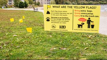 Kirkland campaign cracks down on 'Poopitrators' - New Day Northwest