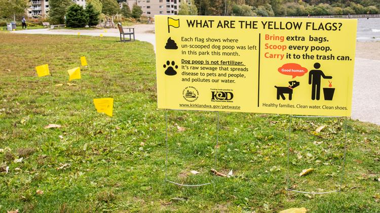 Kirkland Yellow flags mark dog waste