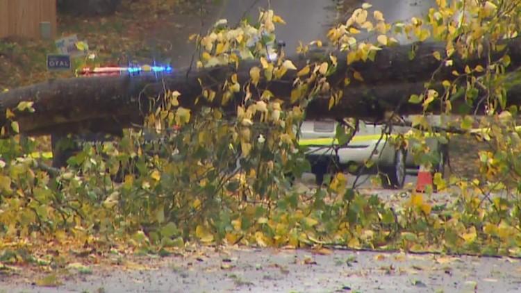 Historic wind storm batters Washington