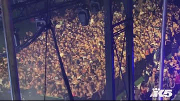 Video shows chaos as barricade collapsed at Seattle's Bumbershoot music festival
