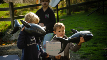 This weekend throughout the Pacific Northwest, you can take action to help save our local Orca Whales