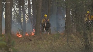 Western Washington wildfires on the rise