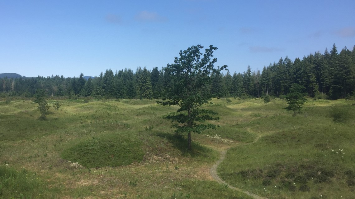 Exploring the Mima Mounds: Ben There, Done That