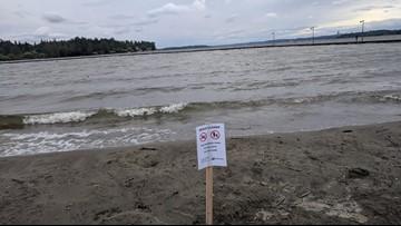 Kirkland's Juanita Beach closes after E. coli detected