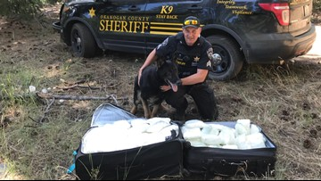 Authorities find suitcases with $1 million of meth in Washington forest