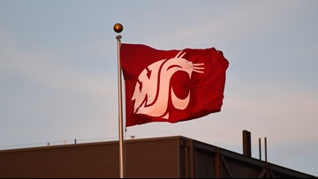 Alum behind Ol' Crimson reacts to College GameDay coming to WSU