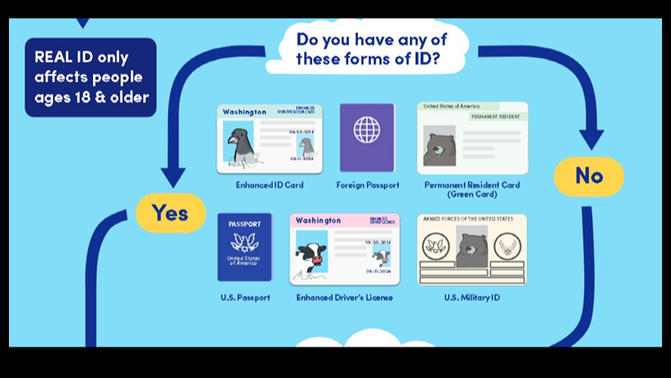 Real ID Act ID forms
