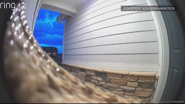 A Colorado woman's doorbell cam footage of a snake is traumatizing — and so are the comments