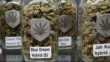 Canadian senate passes marijuana legalization legislation