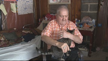 Shelter cat saves Tennessee man from venomous snake inside home