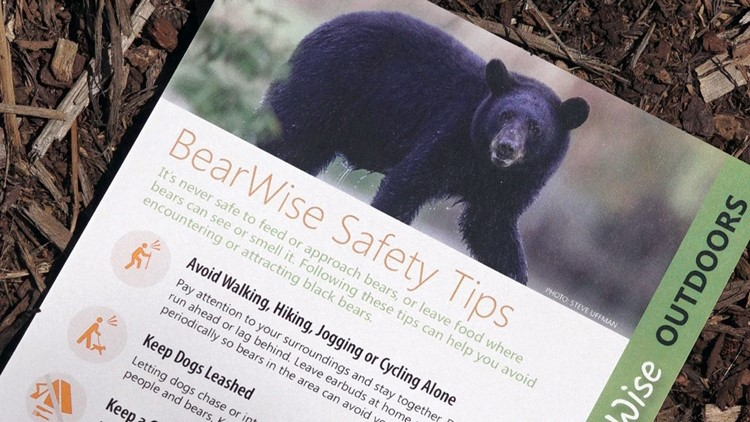 TWRA BearWise Safety Tips Handout Black Bears Tennessee Wildlife