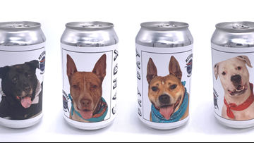 Florida brewery puts shelter dogs on beer cans to find them forever homes