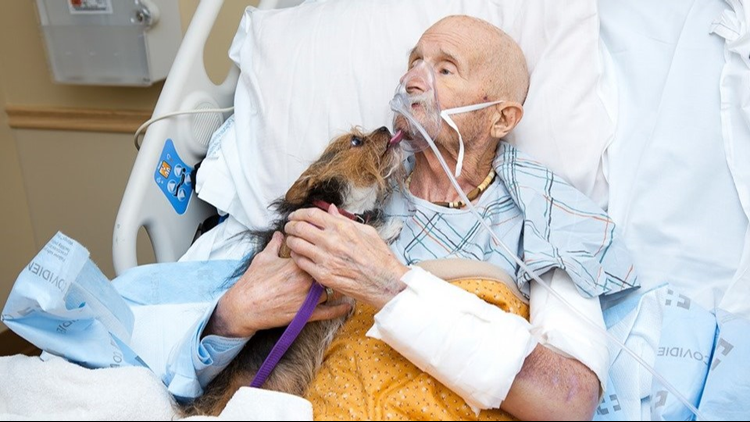 Vietnam veteran reunited with dog in hospice