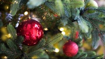 Florida waitresses get $850 Christmas tip at diner